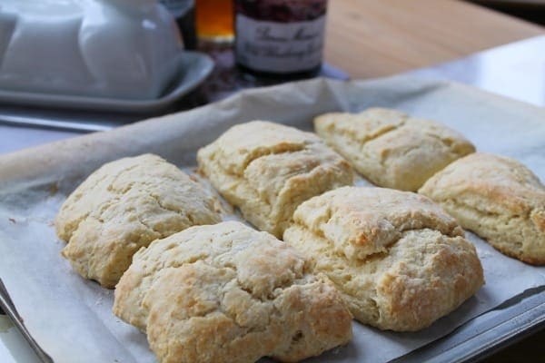 Sour Cream Scones | How to be Awesome on $20 a Day