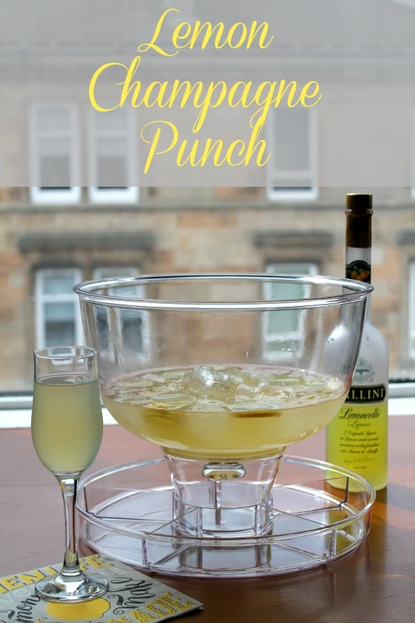 Lemon Champagne Punch   How to be Awesome on $20 a Day