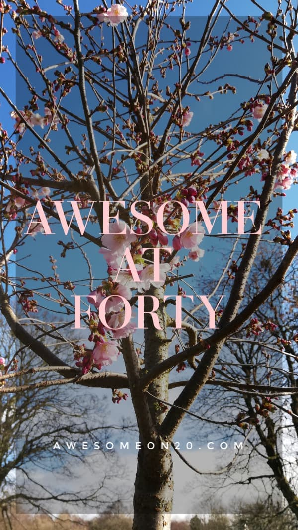 Awesome at 40   How to Be Awesome on $20 a Day