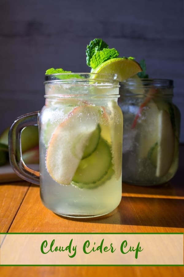 Cloudy Cider Cup | How to Be Awesome on $20 a Day