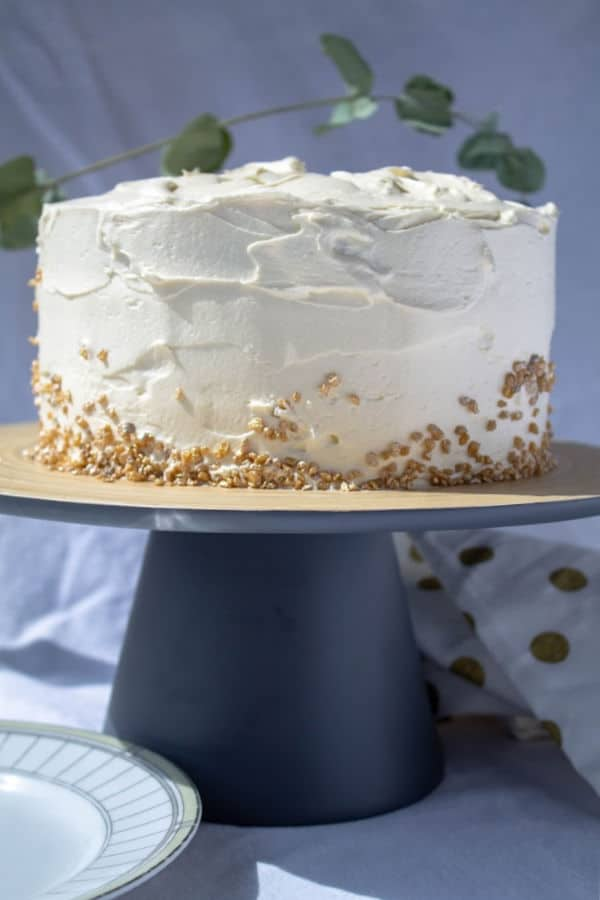 Vanilla Cake   How to Be Awesome on $20 a Day
