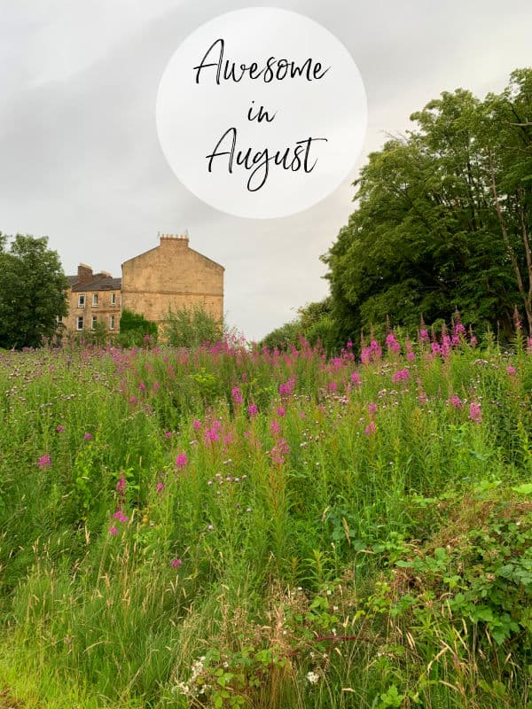 Awesome in August - field with purple flowers and brick building