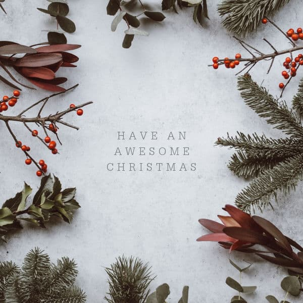 Have an Awesome Christmas surrounded by winter branches