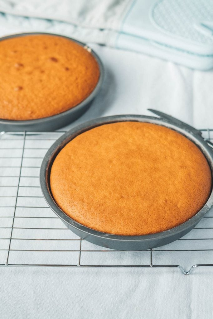 round cake layers in the pan