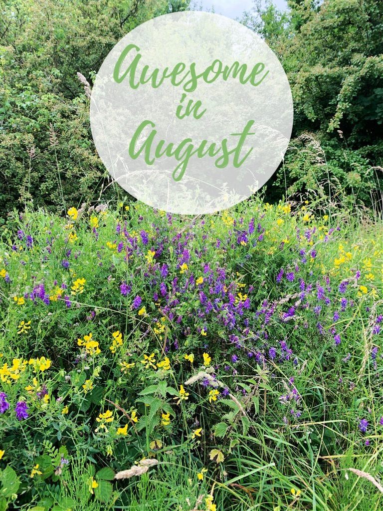 """A field of wildflowers with text """"Awesome in August"""""""